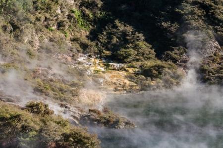 steam rising from hot spring lake in Waimangu photo