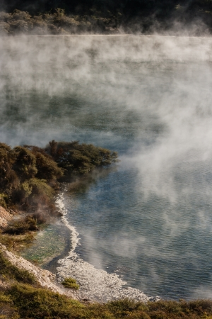 geothermal lake in Waimangu volcanic valley, New Zealand photo