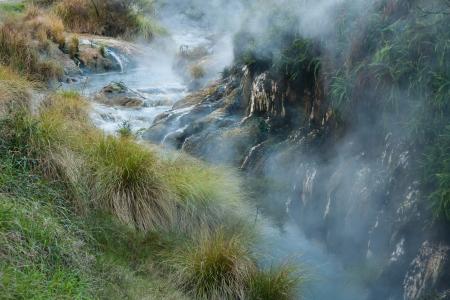 thermal stream in Waimangu volcanic valley, New Zealand