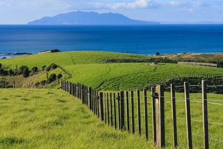 fence across meadows at Tawharanui park
