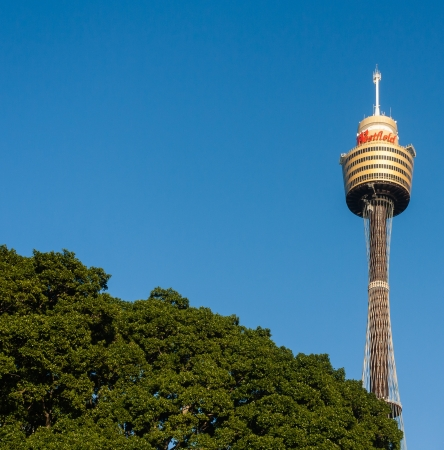 centrepoint tower: Sydney Tower Editorial