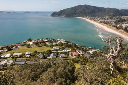 new zealand beach: sandy beach at Bay of Plenty