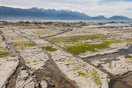 low tide: Kaikoura coast at low tide Stock Photo