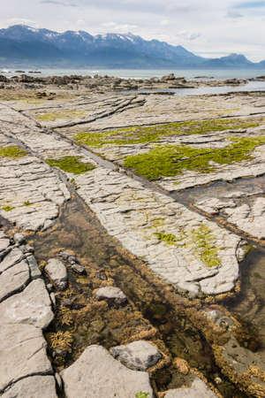 kaikoura: rock pools with seaweed at Kaikoura beach Stock Photo