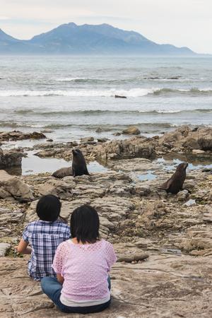 kaikoura: Chinese tourists watching fur seals at  Kaikoura beach