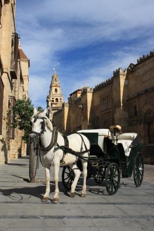 driven: horse driven carriage in Cordoba Stock Photo