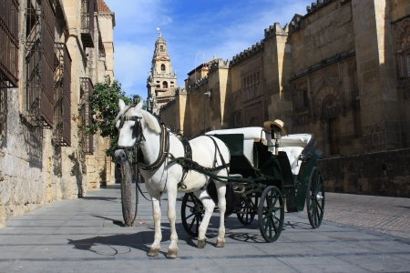 horse-drawn barouche in front of Mezquite in Cordoba photo