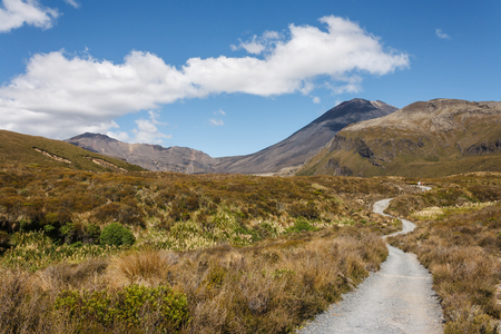 tongariro: footpath in Tongariro National Park