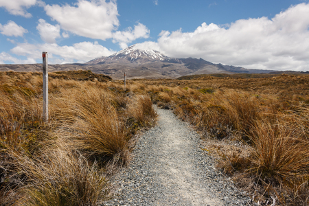 footpath to Mount Ruapehu photo