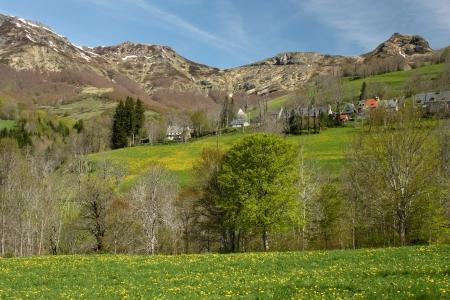 massif: spring meadows at Mandailles - Massif Central