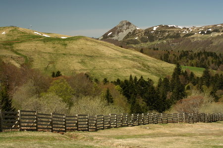 cantal: Puy Griou in Monts du Cantal