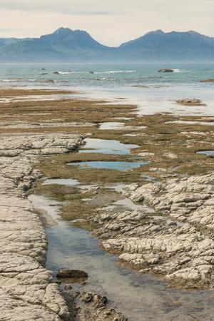 kaikoura: rock pools at Kaikoura coast at low tide