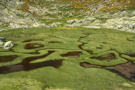 Las Lagunillas in Sierra de Gredos photo