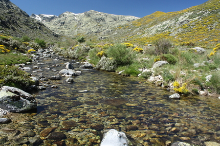 glacial spring in Sierra de Gredos photo