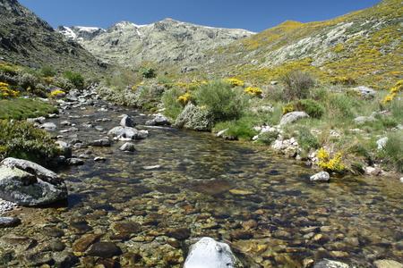 high sierra: glacial spring in Sierra de Gredos