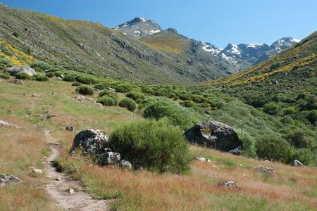 high sierra: footpath across meadows in Sierra de Gredos