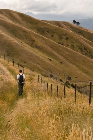 wither: walking track over Wither Hills Stock Photo