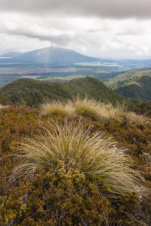 tongariro: storm in Tongariro National Park