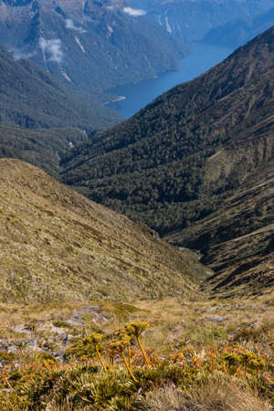 anau: aerial view of lake Te Anau, Fiordland