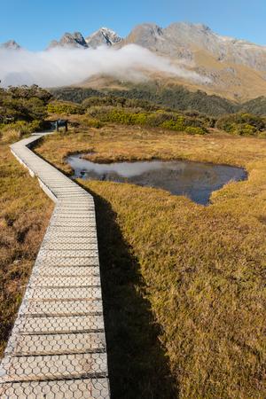 kepler: boardwalk across wetland in Fiordland, New Zealand Stock Photo