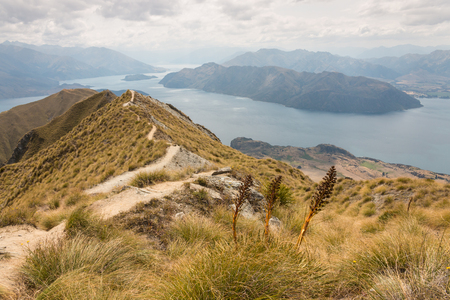 spaniard: track meandering across hills above lake Wanaka