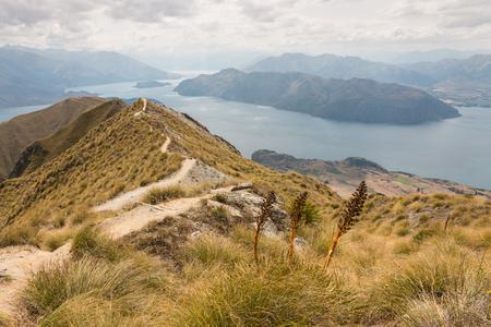 track meandering across hills above lake Wanaka