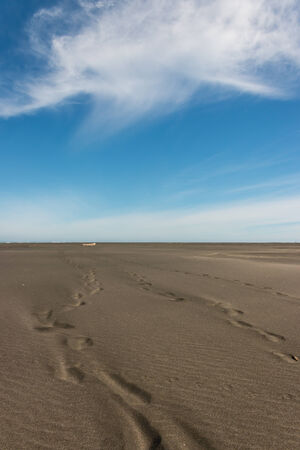 emptiness: footprints in volcanic sand at Whatipu beach