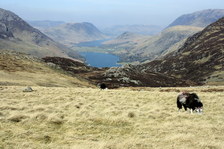 borrowdale: Buttermere and Crummock Water in Lake District