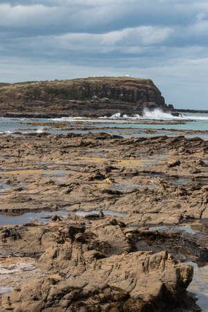 curio: Curio Bay in Catlins at low tide