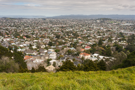 aerial view of Auckland suburb, New Zealand photo