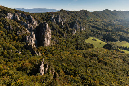 forested: forested slopes in Carpathian mountains