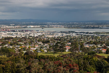 aerial view of Auckland suburbs
