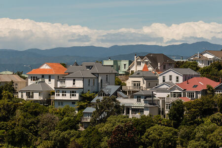 wooden houses on hill in Wellington