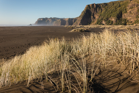 sand dunes at Karekare beach in New Zealand