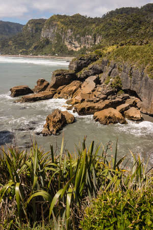 new zealand flax: collapsed cliffs at Punakaiki in New Zealand