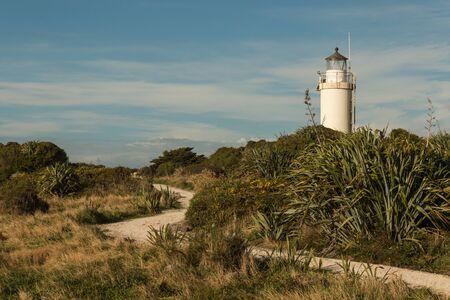 new zealand flax: footpath leading to Cape Foulwind lighthouse on West Coast