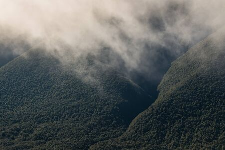 forested: vapour rising from forested slopes