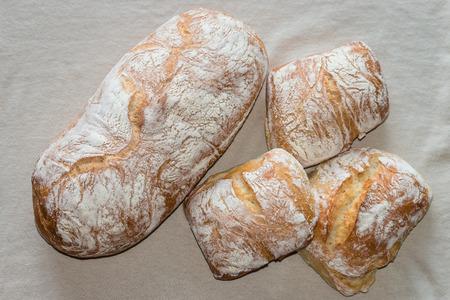 artisan bakery: ciabatta bread and buns