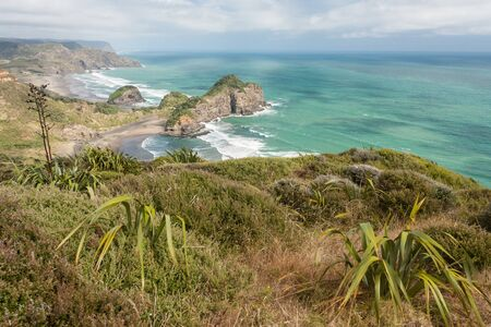 new zealand flax: aerial view of Waitakere Ranges coastline in New Zealand