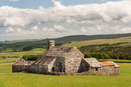 derelict: derelict barn on grassy meadow