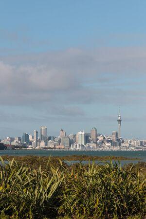 new zealand flax: Auckland skyline with copy space