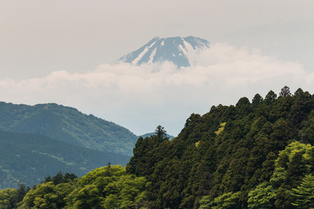 stratovolcano: Mount Fuji with forested slopes in foreground