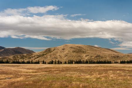 canterbury: grassland in Canterbury, New Zealand Stock Photo