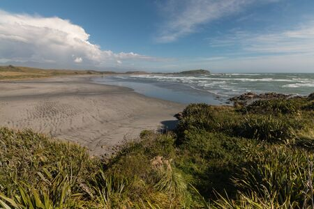 new zealand flax: New Zealand West Coast at low tide