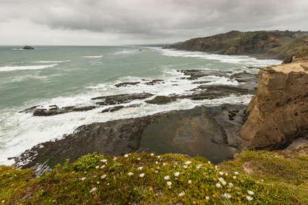 coastline: Waitakere Ranges coastline
