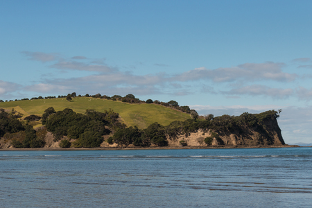 rolling hills: rolling hills at Shakespear Regional Park in New Zealand