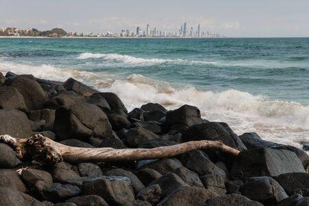 gold coast australia: driftwood on volcanic rocks at Gold Coast, Australia Stock Photo