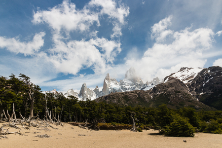 cerro chalten: beech forest in Los Glaciares National Park, Patagonia, Argentina Stock Photo