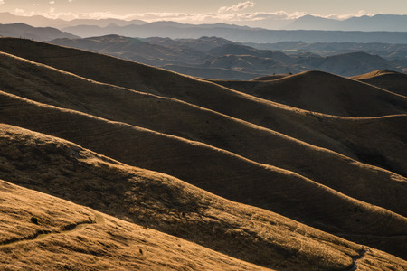 wither: Wither Hills at sunset, Blenheim, New Zealand