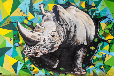 graffiti of rhinoceros